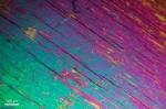 Actinolit în secțiune subțire prin lumină transmisă cu nicoli încrucișați. Prezintă linii de clivaj după o direcție. (2 sec., ISO-200)